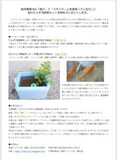 (5/15正午に応募開始予定)「変わりメダカ飼育セット」or「ミジンコ研究セット」の無料プレゼント企画を計画しています。